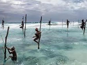Sri Lankan and Maldives Family Adventure